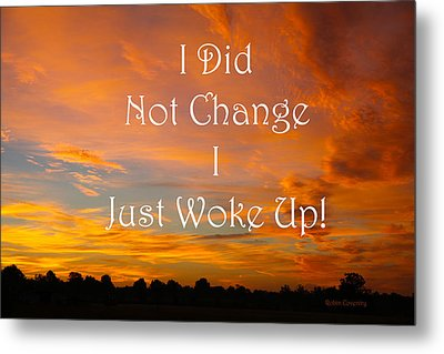 I Did Not Change Metal Print by Robin Coventry
