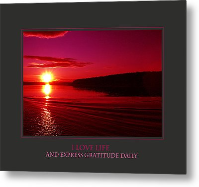 I Love Life And Express Gratitude Daily Metal Print by Donna Corless