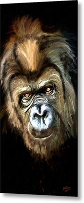 Gorilla Portrait Metal Print by James Shepherd