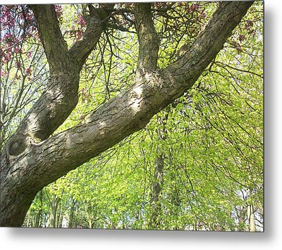 Metal Print featuring the painting I Love You Tree by Judith Desrosiers