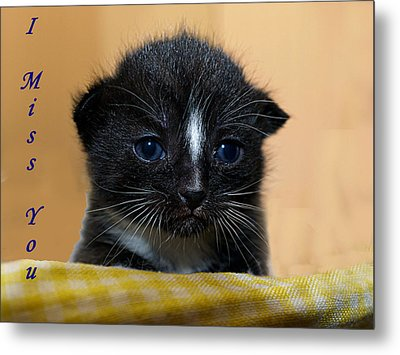 I Miss You Kitty Metal Print