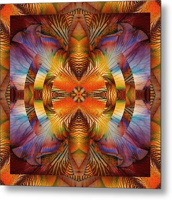 I Rise Metal Print by Bell And Todd