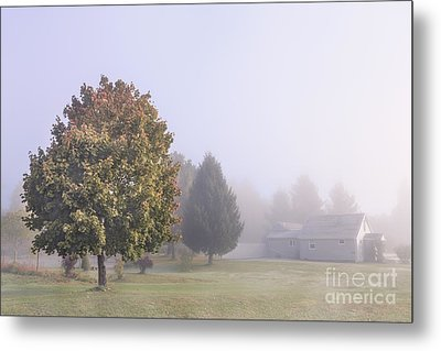 I Scent The Morning Air Metal Print by Evelina Kremsdorf