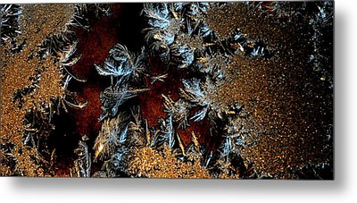 Ice Cold Gold Metal Print