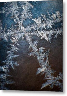 Ice Crossing Metal Print