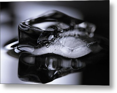 Metal Print featuring the photograph Ice Cube V3 by Rico Besserdich