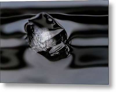 Metal Print featuring the photograph Ice Cube V4 by Rico Besserdich