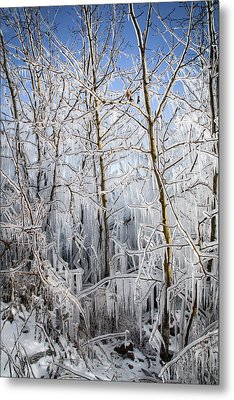Ice Curtain Metal Print by Jill Laudenslager