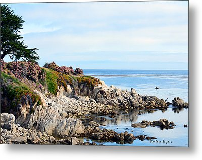 Ice Plant Along The Monterey Shore 2 Metal Print by Barbara Snyder