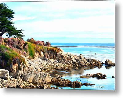 Ice Plant Along The Monterey Shore Metal Print by Barbara Snyder