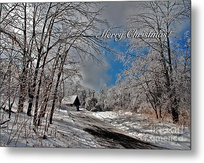 Ice Storm Christmas Card Metal Print by Lois Bryan