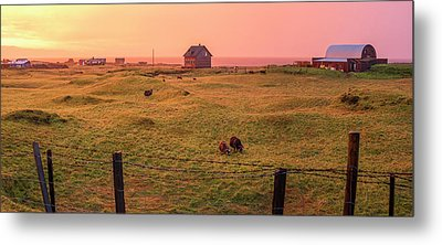 Metal Print featuring the photograph Icelandic Farm During Sunset by Brad Scott