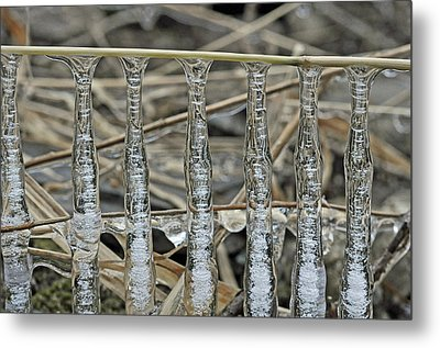 Metal Print featuring the photograph Icicles On A Stick by Glenn Gordon