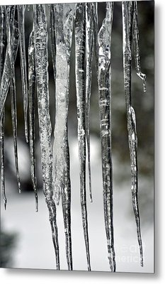 Metal Print featuring the photograph Icicles by Juls Adams