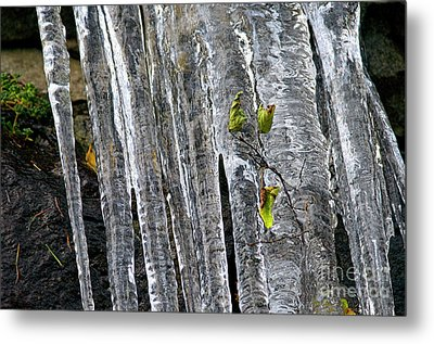 Metal Print featuring the photograph Icicles by Sharon Talson