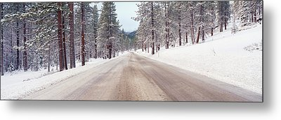 Icy Road And Snowy Forest, California Metal Print by Panoramic Images