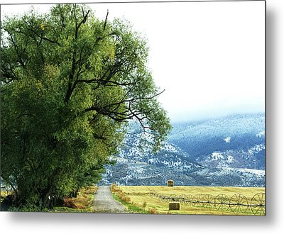 Idaho Road Trip Metal Print by Cynthia Powell