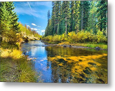 Idaho Stream 2 Metal Print