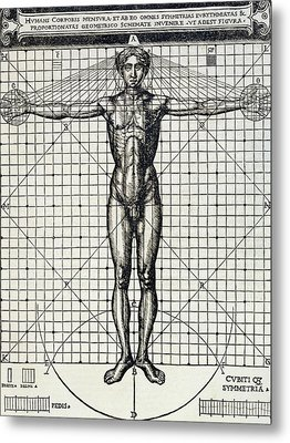 Ideal Proportions Based On The Human Body Metal Print