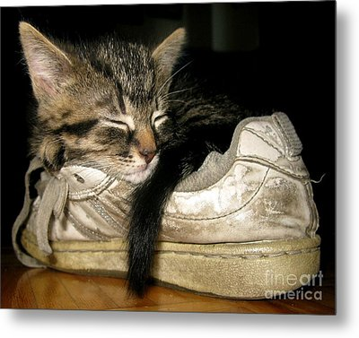 If The Shoe Fits Metal Print by Heather King