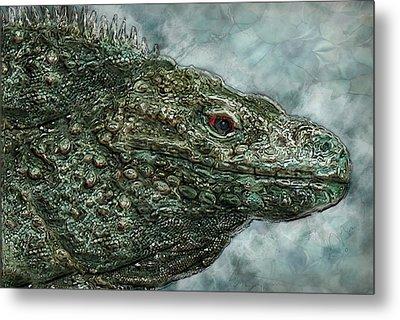 Iguana 2 Metal Print by Jack Zulli