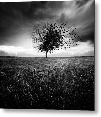 Illusion D'un Printemps Perdu Metal Print by Sebastien Del Grosso