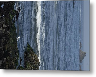 Image 1288050075 Metal Print by Don Wolf