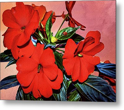 Impatience With Ladybug Metal Print by Diane Schuster