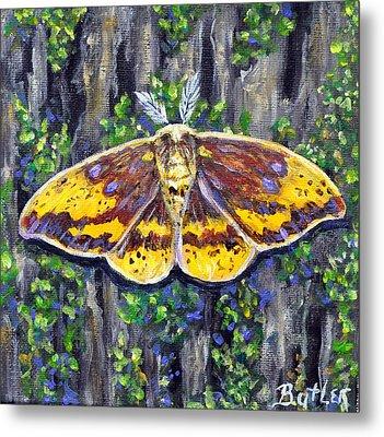 Imperial Moth Metal Print by Gail Butler