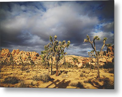 In A Restless World Metal Print