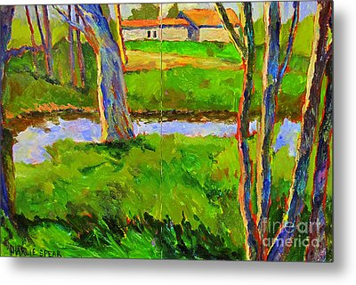 In A Wood With A Creek Metal Print by Charlie Spear