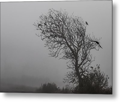 Metal Print featuring the photograph In Days Of Silence by Odd Jeppesen