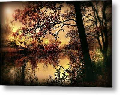 In Dreams Metal Print by Jacky Gerritsen
