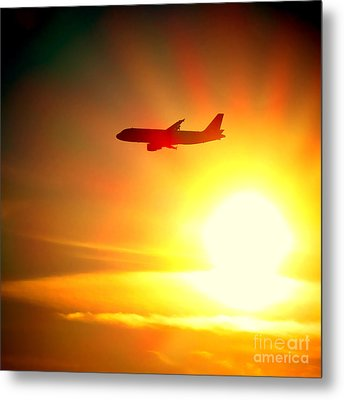 In Flight Metal Print by Olivier Le Queinec