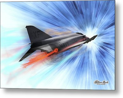 In Flight Metal Print by William Havle