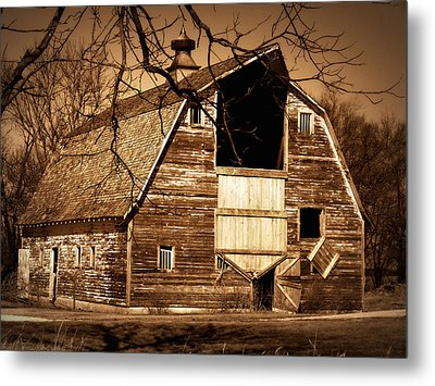 In Need Metal Print by Julie Hamilton