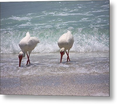 In Paired Metal Print by Amanda Vouglas