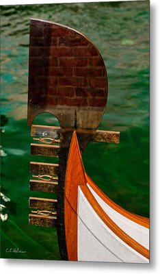 In Reflection Metal Print by Christopher Holmes