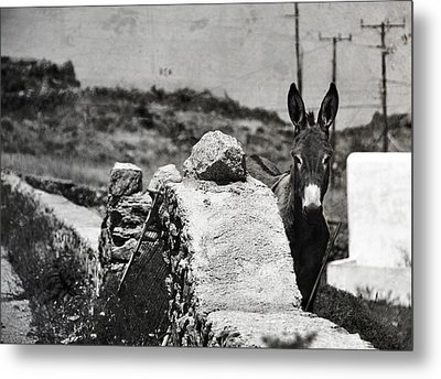 In The Countryside Of Mykonos Metal Print