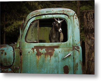 In The Drivers Seat Metal Print