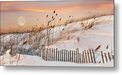Metal Print featuring the photograph In The Dunes by Robin-lee Vieira