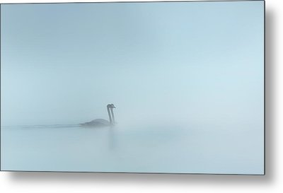 In The Fog Metal Print by Bill Wakeley