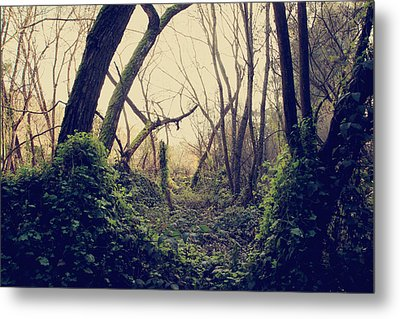 In The Forest Of Dreams Metal Print by Laurie Search