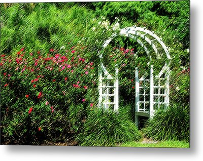 In The Garden Metal Print by Carolyn Marshall