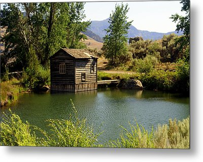 In The High Country Metal Print by Marty Koch