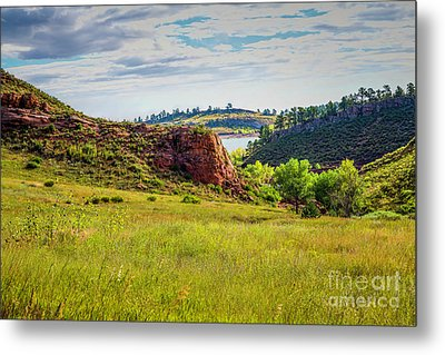 In The Meadow Metal Print by Jon Burch Photography