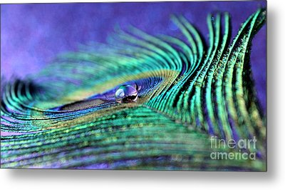 In The Middle Of Peace Metal Print by Krissy Katsimbras