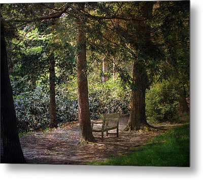 Metal Print featuring the photograph In The Shade by John Rivera