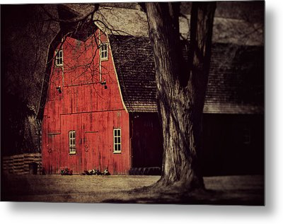 In The Spotlight Metal Print by Julie Hamilton