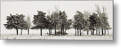 Metal Print featuring the photograph In The Tree Line by Don Durfee